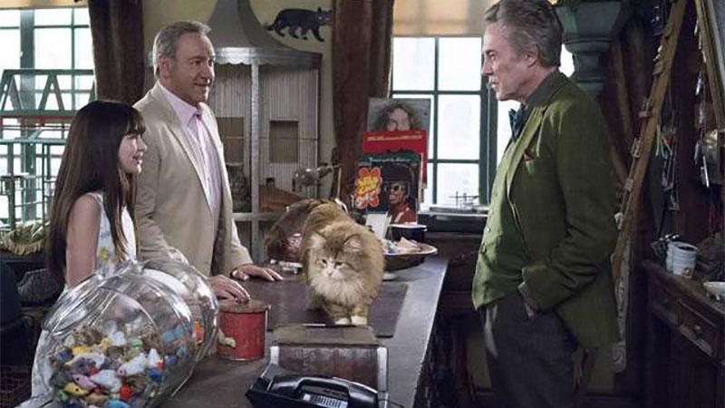 影/百隻貓咪齊聚 這電影好療癒