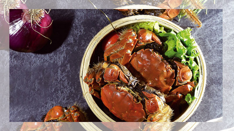 Holy Crab! 秋蟹正肥